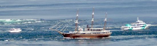 鳴門渦潮観潮船